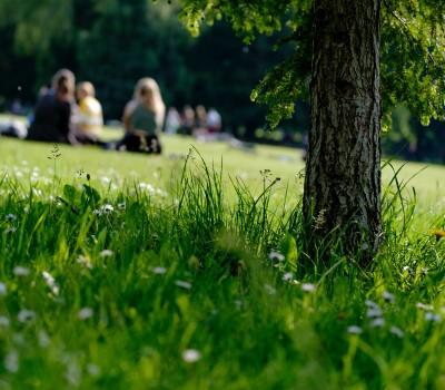 Schoolexcurie Londen Hyde park